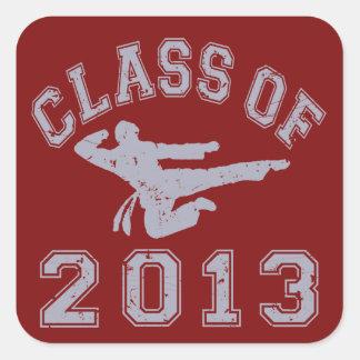 Class Of 2013 Martial Art - Grey 2 Stickers