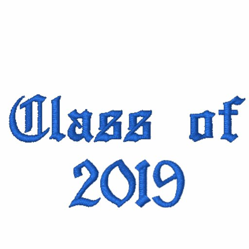 Class of 2019 - Black and Blue Embroidered Hoody