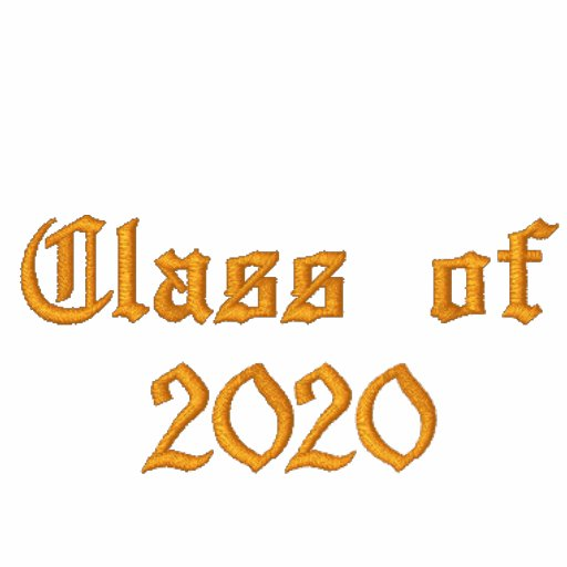 Class of 2020 - Orange and Black Embroidered Hoody