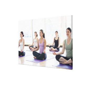 Class of women performing the meditative stretched canvas print