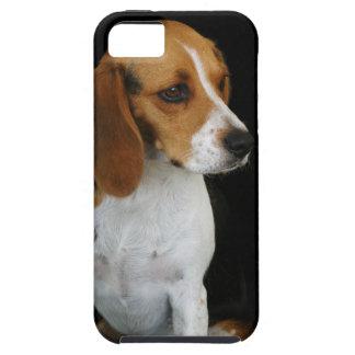 Classic Beagle iPhone 5 Covers