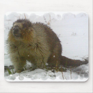 Classic Beavers Mouse Pad