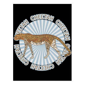 Classic Cheetah Postcard