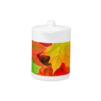 Classic Colored Autumn Fall Leaf Print