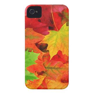 Classic Colored Autumn Fall Leaf Print iPhone 4 Covers