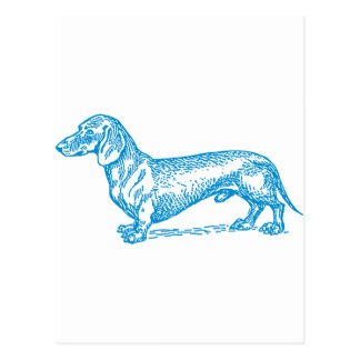 Classic Doxie - Blue Postcard