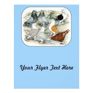 Classic Frill Barred Pigeons Custom Flyer