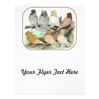 Classic Frill Pigeons Blondinettes 21.5 Cm X 28 Cm Flyer