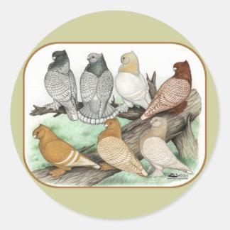 Classic Frill Pigeons Blondinettes Round Sticker