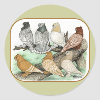 Classic Frill Pigeons Blondinettes Round Sticker