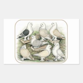 Classic Frill Pigeons Satinettes Rectangular Sticker