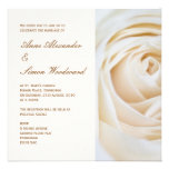 Classic Ivory White Rose Wedding Invitiation Announcement