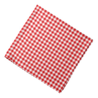 Classic Red Gingham Check Pattern Dog Bandana