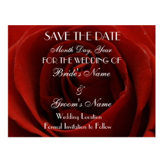 Classic Red Rose Save the Date Wedding Postcard