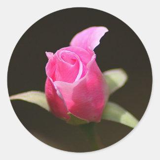 Classic Round Sticker, Glossy - Pink Rosebud Round Sticker