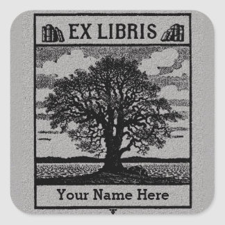 Classic Tree with Books Ex Libris Bookplate - Grey Square Stickers