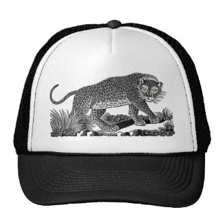 Classic Victorian Etching  - Leopard Trucker Hats