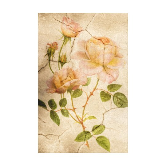 Classic Vintage Shabby Chic Rustic Pale Pink Roses