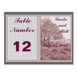 Classic Wedding Memories Table Number Placard Post Cards