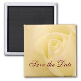 Classic white bridal rose save the date magnets
