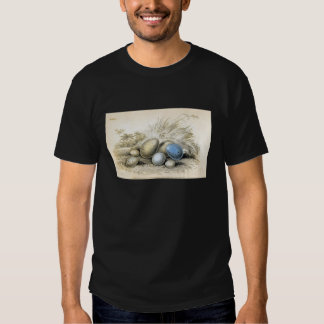 Classic Zoological Etching - Bird Eggs T Shirts