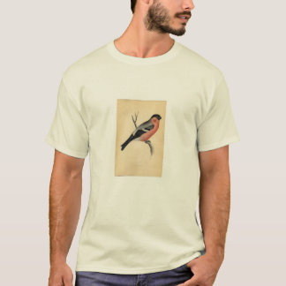 Classic Zoological Etching - Bullfinch T-Shirt
