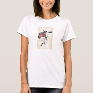 Classic Zoological Etching - Bullfinch T-Shirt