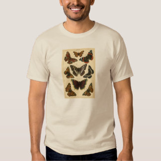 Classic Zoological Etching - Butterflies T Shirt