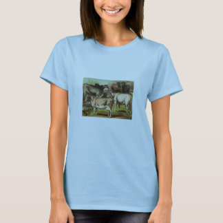 Classic Zoological Etching - Cattle T-Shirt