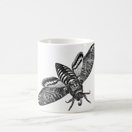 Classic Zoological Etching - Death's Head Moth Coffee