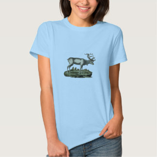 Classic Zoological Etching - Deer Tee Shirts