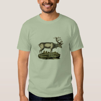 Classic Zoological Etching - Deer Tshirts