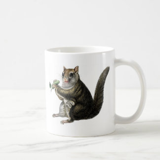 Classic Zoological Etching - Flying Squirrel Coffee Mug