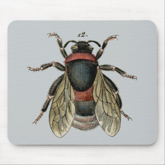 Classic Zoological Etching of a Bumble Bee Mouse Mat