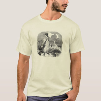 Classic Zoological Etching - Penguins T-Shirt