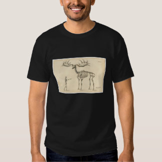 Classic Zoological Etching - Prehistoric Elk Tee Shirt