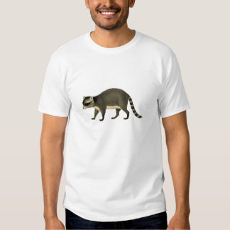 Classic Zoological Etching - Raccoon Shirts