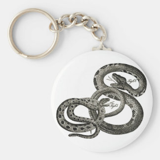 Classic Zoological Etching - Rattlesnakes Keychain