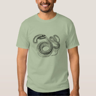 Classic Zoological Etching - Snake Skelton T Shirts