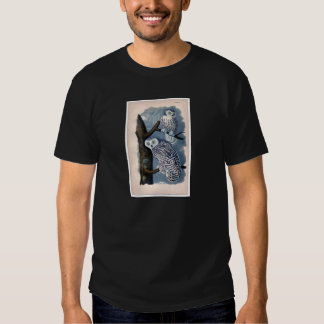 Classic Zoological Etching - Snowy Owl Shirts