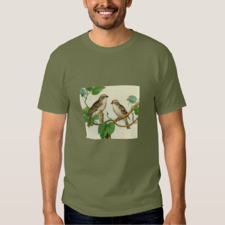 Classic Zoological Etching - Sparrow T-shirts