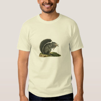 Classic Zoological Etching - Squirrel T-shirt