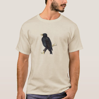 Classic Zoological Etching - Starling T-Shirt