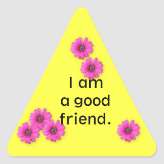 Classroom Behaviour Management  triangle sticker