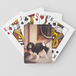 Classy Dog Playing Cards