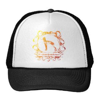Classy Weathered Italian Greyhound Hat