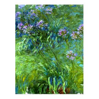 Claude Monet: Agapanthus Postcard