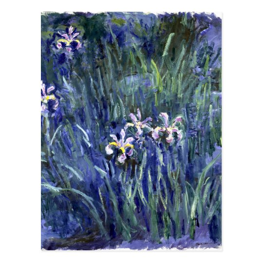 Claude Monet: Irises Postcard