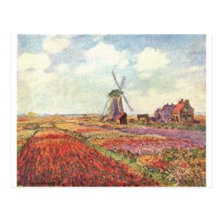 Claude Monet Tulips in Holland Postcard