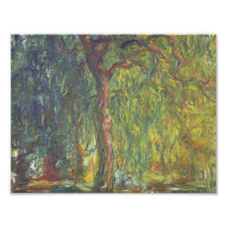Claude Monet - Weeping Willow Photographic Print